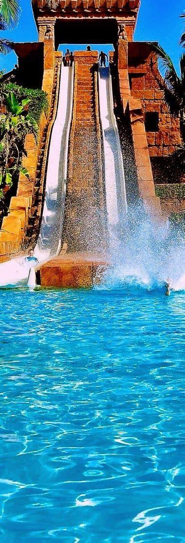 fuite d eau toilette 17 best images about atlantis bahamas on swim dolphins and atlantis resort bahamas