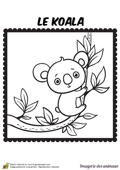 jeu fille cuisine coloriage imagerie des animaux le koala hugolescargot com