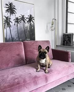 Samt Sofa Rosa : die besten 25 samt sofa ideen auf pinterest samtcouch gr nes sofa und blaue wohnzimmersofas ~ Frokenaadalensverden.com Haus und Dekorationen