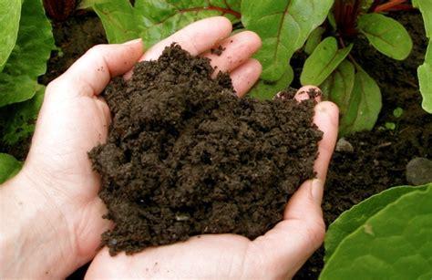 Bulk Compost Boise