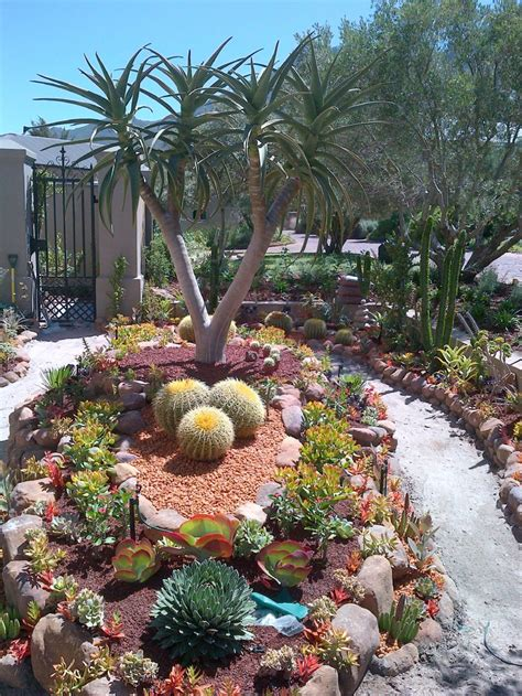 desert garden landscaping get the oasis for your home with these amazing desert landscaping ideas awesome indoor outdoor