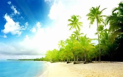Beach 3d Maldives Palm Explore