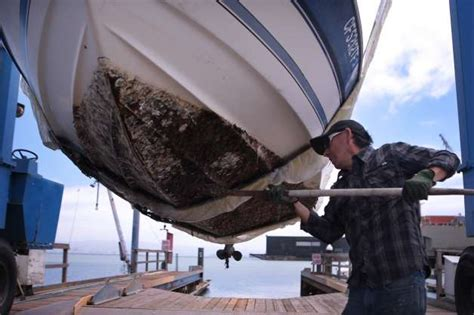 Boat Repair In San Jose by S F Boatworks Last Of Its In This Maritime City