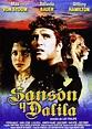 Samson and Delilah (TV) (1984) - FilmAffinity