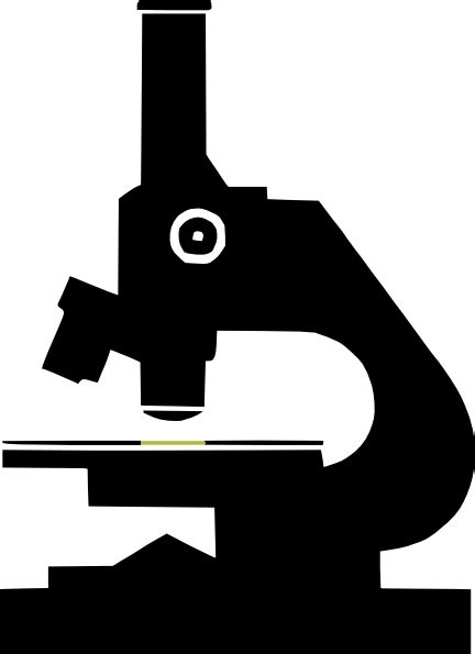 Microscope Clip Art at Clker.com - vector clip art online ...