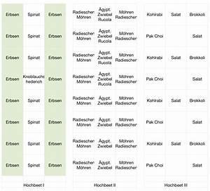 Hochbeet Bepflanzen Im 1 Jahr : mein gr nes projekt neue hochbeete mein pflanzplan f r den fr hling ~ Frokenaadalensverden.com Haus und Dekorationen