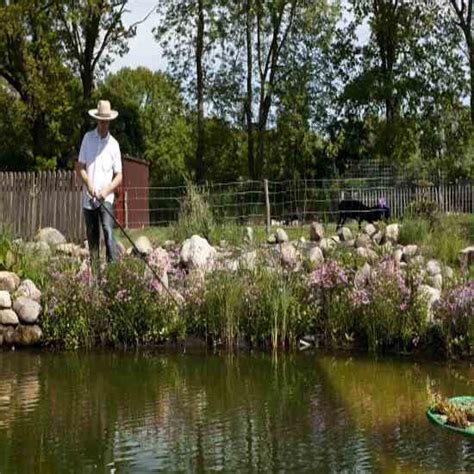 stocking  fish pond real food mother earth news