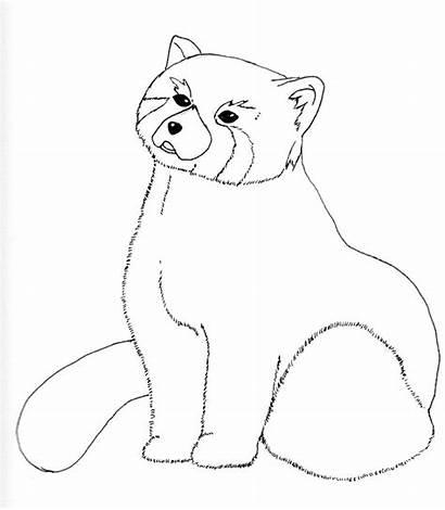Panda Coloring Drawings Animals Line Deviantart Deviant