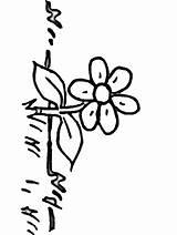 Coloring Flowers Grass Flower Flower10 Boyama Sayfaları Colouring Sheets Doğa Taslaklar Sanat çiçekler Arapça Kaligrafi Popular Coloringpages101 Advertisement Coloringhome sketch template