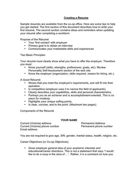 Great Resumes by 12 13 Resume Opening Statements Exles