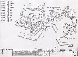 1978 Ford 351m Carburetor Vacuum Diagram  Ford  Auto
