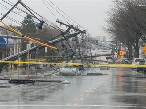 noreaster leaves     power