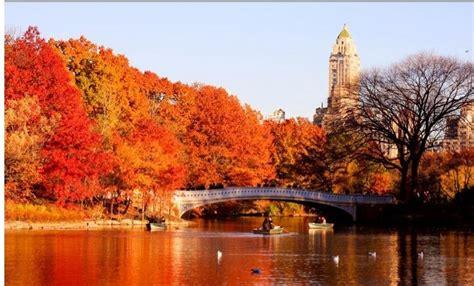 central park   york city autumn autumn indian