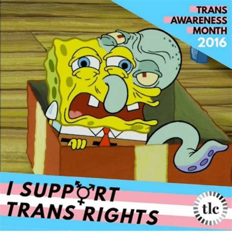 Trans Memes - 25 best memes about trans rights trans rights memes