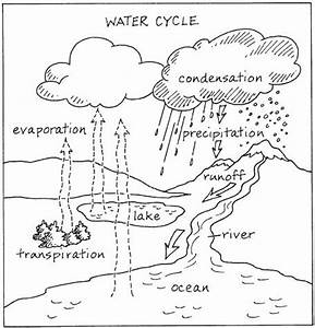 The hydrologic cycle coloring bags and search for Cyclic timer