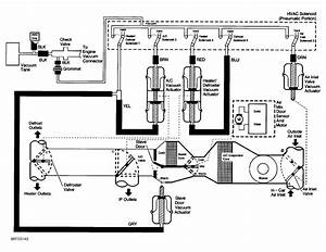 1999 Auto-hvac Vacuum Schematic Needed