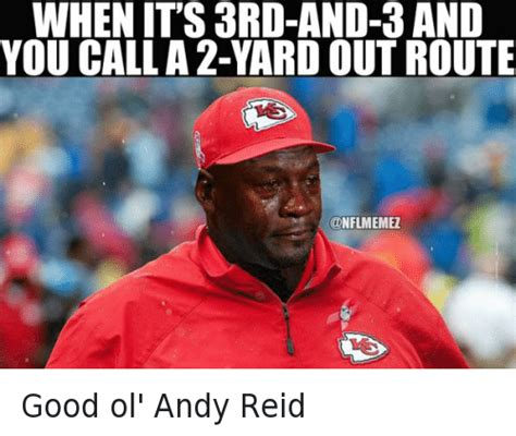 Andy Reid Meme - funny michael jordan crying nfl and nfl playoffs memes of 2016 on sizzle