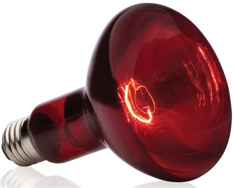 exo terra heat l exo terra heat glo infrared spot l 150 w