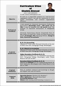 sample resume for experienced professional free samples With experienced professional resume template