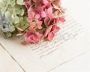 old love letters and flowers of garden hortensia romantic With love letters with flowers
