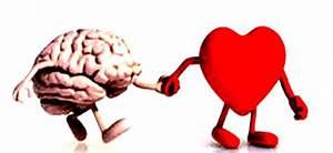 U00bfc U00f3mo Es La Naturaleza De Nuestras Emociones   U2013 Psicologia