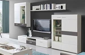 Schwedische Möbel Online Shop : wohnwand ottawa wei grau von forte m bel letz ihr online shop ~ Bigdaddyawards.com Haus und Dekorationen