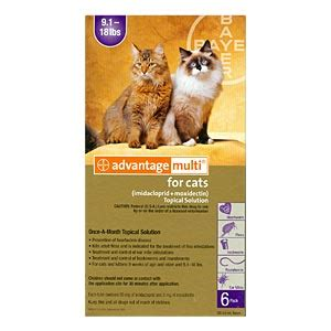 advantage multi for cats 6 pack advantage multi for cats 9 12 lbs 6 month purple