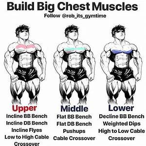 If You Want Huge Pecs You U0026 39 Ll Need To Challenge All Of Your