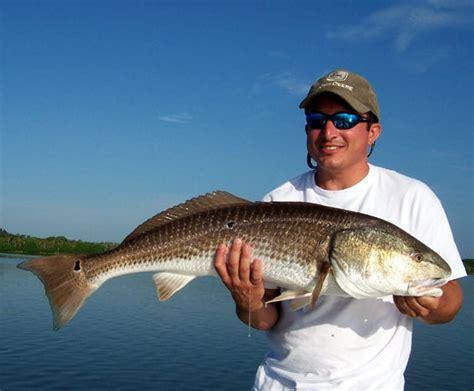 florida flats  inshore fishing charters captain jim ross