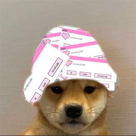 Doggo Hat Boii Youtube