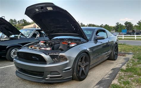 amazing mustang forum if you amazing mustang pics you really should go