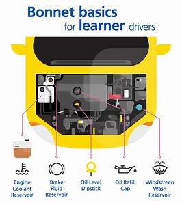 Bonnet Basics  The Essential Guide For Learner Drivers