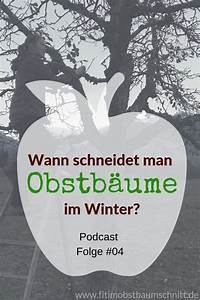 Wann Schneidet Man Hortensien Zurück : fio04 wann schneidet man obstb ume im winter ~ A.2002-acura-tl-radio.info Haus und Dekorationen