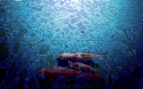 Japanese Koi Fish Pond, Koi Fish Wallpaper Free Download