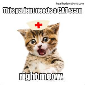 cat scan friday this patient needs a cat scan right meow