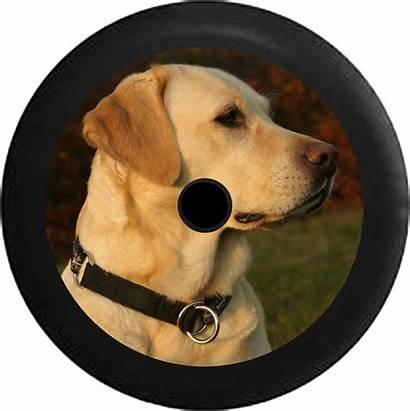 Jeep Dog Labrador Camera Lab Hunting Golden