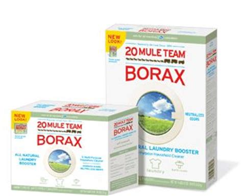 Fleas Hardwood Floors Borax by Six Creative Uses For Borax Can Use On Ant On