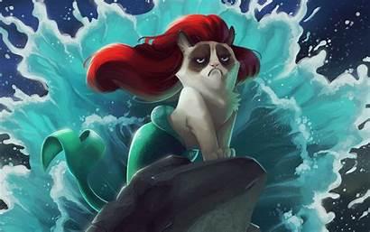 Mermaid Cat Wallpapers Grumpy Background Cartoon Screensavers