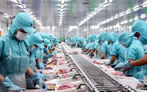"""Siêu đội hình giúp việt nam dự world cup: Xuất khẩu thủy sản Việt Nam vào thị trường châu Âu: Gỡ """"rào cản"""" để mở rộng thị phần"""