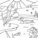 Coloring Sloot Pond Gambar Tuk Habitat Animals Printable Mewarnai Pemandangan Het Animal Ponds Baru Dieren Kleurplaten Colouring Kind Viatico Koen sketch template