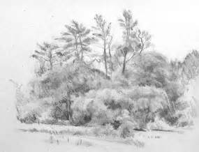 Nature Pencil Drawing Ideas