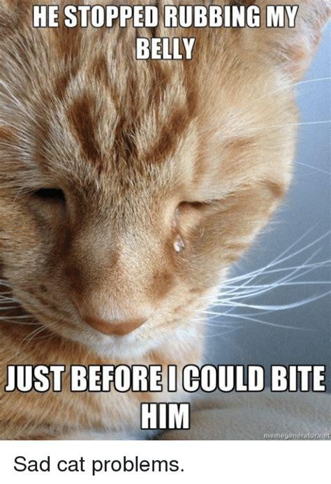 sad cat meme www imgkid com the image kid has it