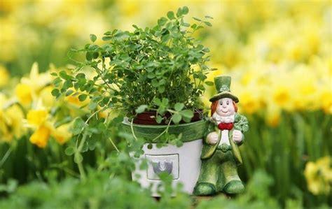 Irish symbols: Shamrocks, leprechaun, what do they mean