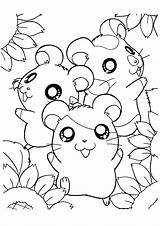 Hamtaro Coloring Pages Hamster sketch template