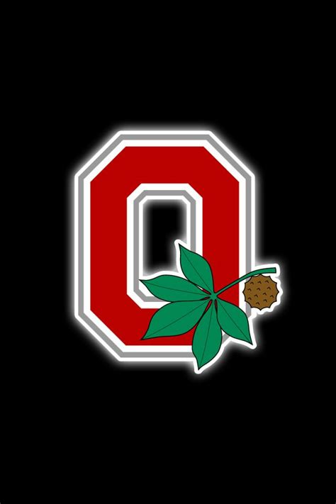 ohio state buckeyes wallpapers gallery