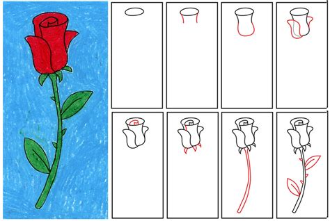 draw  rose step  step easy clipart