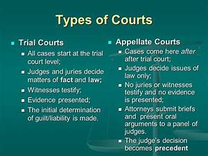 Trial Courts Vs Appellate Courts  Nishiohmiya