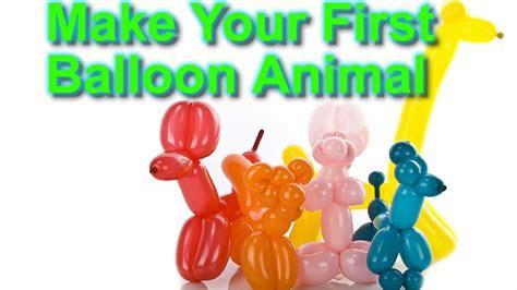 balloon animal  beginners
