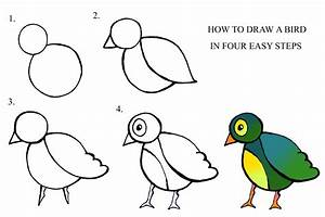 Daryl Hobson Artwork How To Draw A Bird Step By Step