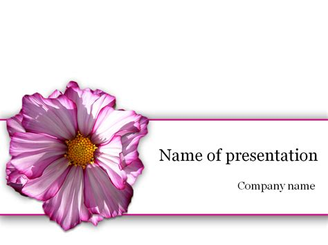 purple flower powerpoint template